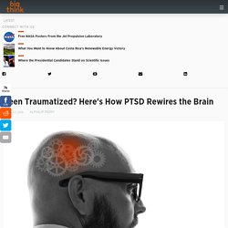 Been Traumatized? Here's How PTSD Rewires the Brain