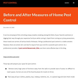 Right Evaluation of Pest Control Services in Before and After