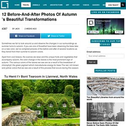 12 Before-And-After Photos Of Autumn 's Beautiful TransformationsOnemorepost