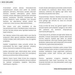 BEGI-BELARRI - GEURE IRRATIA