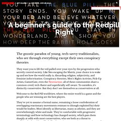 A beginner's guide to the Redpill Right