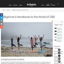 A Beginner's Handbook to the World of CBD - The Wörd