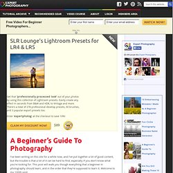 » A Beginner's Guide To Photography