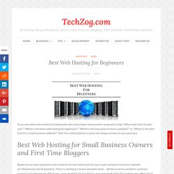 information best web hosting for small business