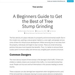 A Beginners Guide to Get the Best of Tree Stump Grinding