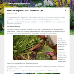 Lawn Care - Beginners Guide & Maintenance Tips