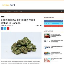 Beginners Guide to Buy Weed Online in Canada