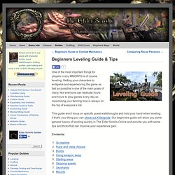 Beginners Leveling Guide & Tips