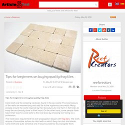 Tips for beginners on buying quality frag tiles