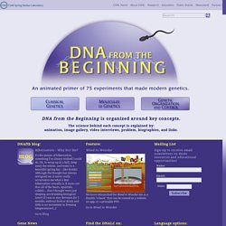 DNA from the Beginning - An animated primer of 75 experiments that made modern genetics.
