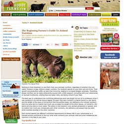 The Beginning Farmer's Guide To Animal Nutrition