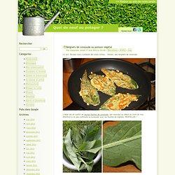 Beignets de consoude ou poisson végétal - Quoi de neuf au potager ?