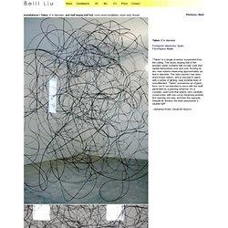 Beili Liu artwork, Half Empty, Half Full