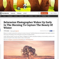 Belarusian Photographer Wakes Up Early In The Morning To Capture The Beauty Of Winter