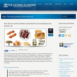 How did we come to believe saturated fat and cholesterol are bad for us? - The Eating Academy