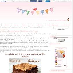 Bellevue : Gâteau au chocolat mousseux #1 de C. Felder
