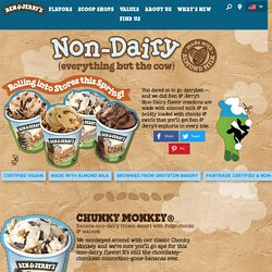 Ben & Jerry's Non-Dairy Flavors