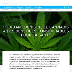 Pourtant dénigré, le cannabis a des bénéfices considérables pour la santé