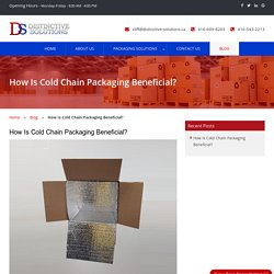 How Is Cold Chain Packaging Beneficial?