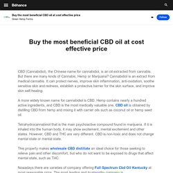 Buy the most beneficial CBD oil at cost effective price