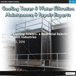 Marley Cooling Tower Services in Florida