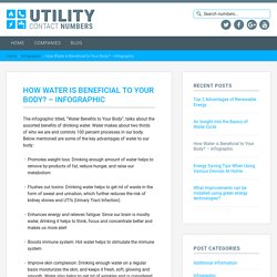 How Water is Beneficial to Your Body? - Infographic — Utility Contact Numbers