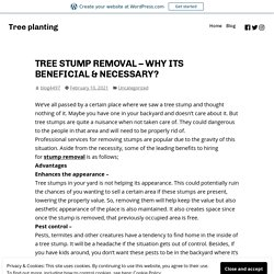 TREE STUMP REMOVAL – WHY ITS BENEFICIAL & NECESSARY?