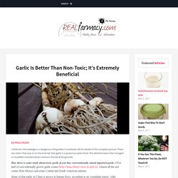 Garlic Is Better Than Non-Toxic; It's Extremely Beneficial – REALfarmacy.com