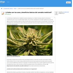 ¿Cuáles son los usos y beneficios básicos del cannabis medicinal?