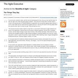 The Agile Executive