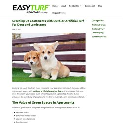 Benefits Of Using Outdoor Artificial Turf for Dogs and Yards for Apartments