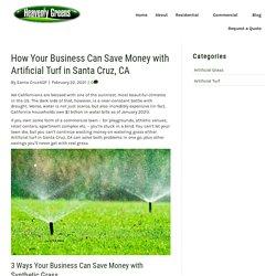 Money-Saving Benefits of Artificial Turf for Santa Cruz, CA Businesses
