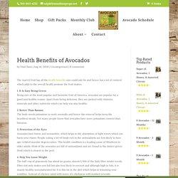 Quality Avocado : Buy Variety of Avocado