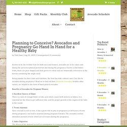 California Avocados - Benefits of Heirloom Avocados