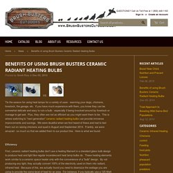 Benefits of using Brush Busters Ceramic Radiant Heating Bulbs – Brush Busters Outdoors