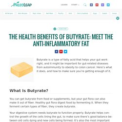 The Health Benefits of Butyrate: Meet the Anti-Inflammatory Fat
