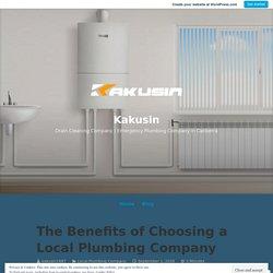 The Benefits of Choosing a Local Plumbing Company – Kakusin