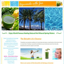 Rejuvenate with Jan Detox Cleanse Retreat CA.