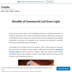 Benefits of Commercial Led Grow Light – Croplite