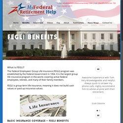 Choose the Fegli Basic Life Insurance Retirement Plan