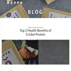 Top 3 Health Benefits of Cricket Protein - Hoppa