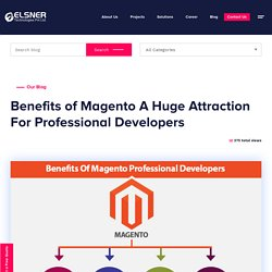 Top Benefits of Hire Dedicated Magento Developers