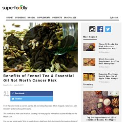 Benefits of Fennel Tea & Essential Oil Not Worth Cancer Risk
