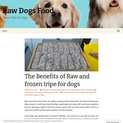 The Benefits of Raw and frozen tripe for dogs