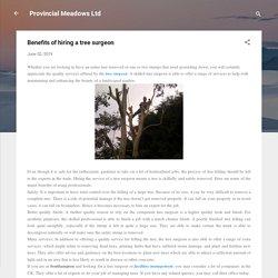 Benefits of hiring a tree surgeon