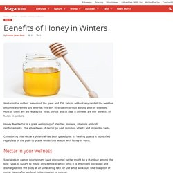 Benefits of Honey in Winters - Maganum