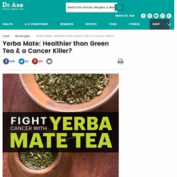 Yerba Mate: Healthier than Green Tea & a Cancer Killer?