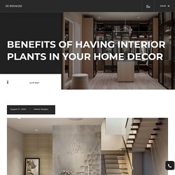 Benefits of having interior plants in your home decor