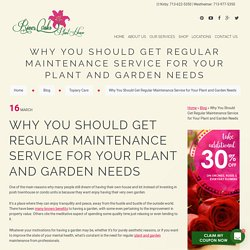 WHY YOU SHOULD GET REGULAR MAINTENANCE SERVICE FOR YOUR PLANT AND GARDEN NEEDS