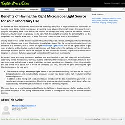 Benefits of Having the Right Microscope Light Source for Your Laboratory Use